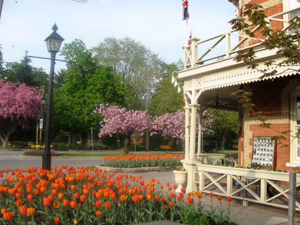 Tulips are blooming and trees are out in flower in beautiful Niagara-on-the-Lake.